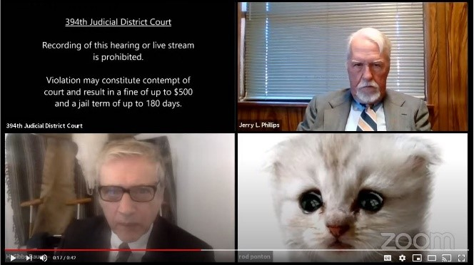 This video went viral - in 2020 an American lawyer was using his secretary's  computer and it somehow changed his image to a cat filter.